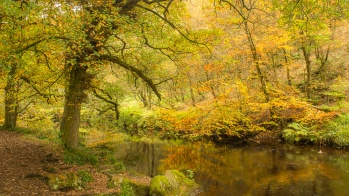Autumn at Hardcastle Crags