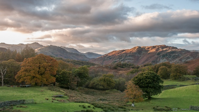 Lingmoor Fell and Bowfell